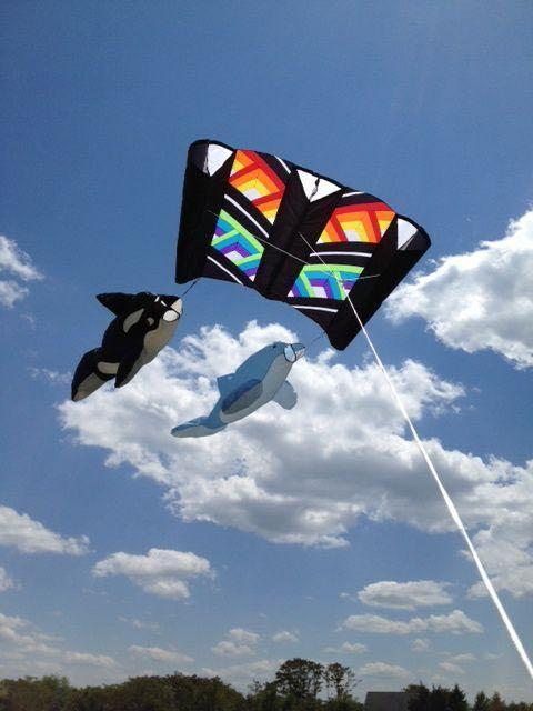 TOP QUALITY WINDSOCKS AT BALD EAGLE FLAG STORE