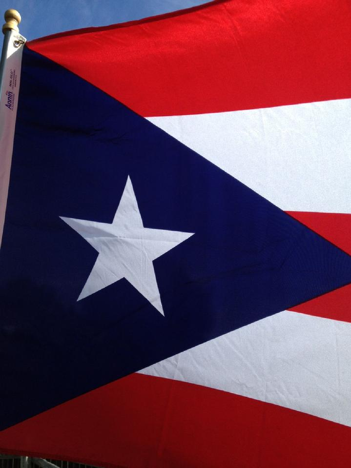 Puerto Rico Flag From Bald Eagle Industries Store And Annin Makers